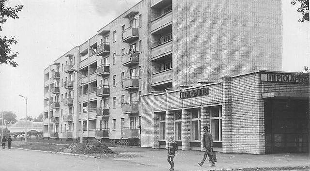 Дом и магазин по улице Горшковой